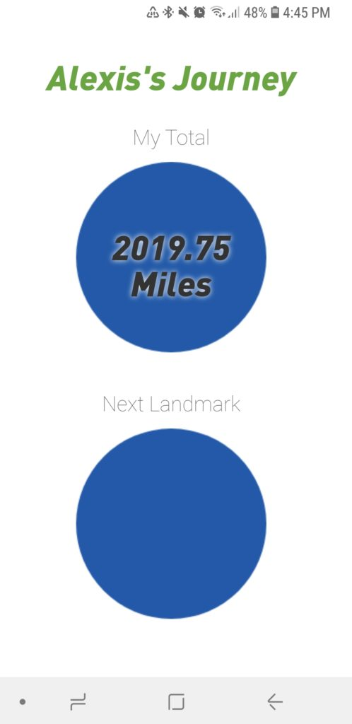run the year tracker 2018 miles